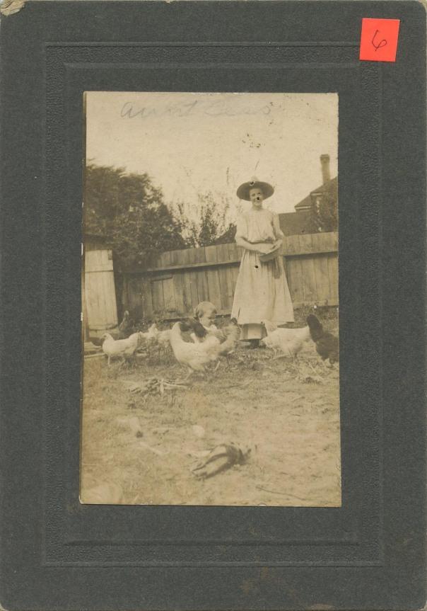 chickens aunt bess
