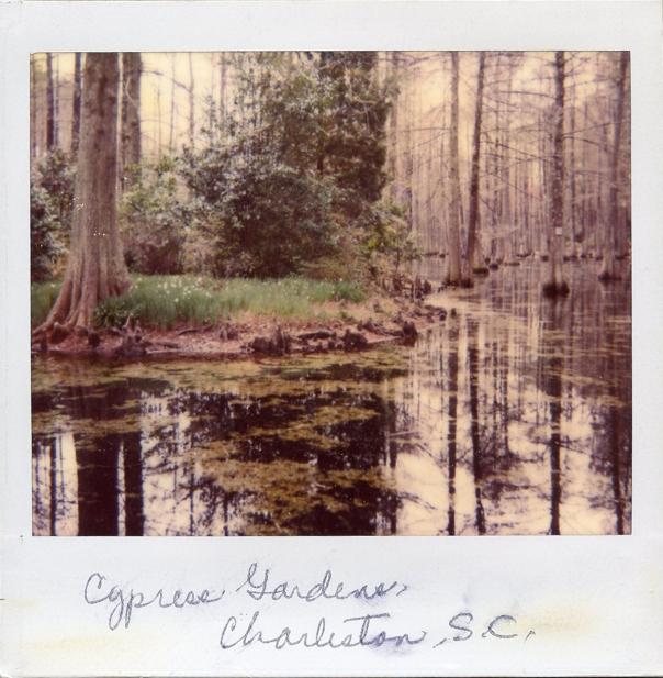 cypress gardens 3 polaroid